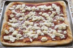 Hemlagad margheritapizza i en bakplåt Royaltyfria Bilder