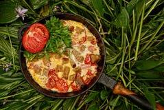 Hemlagad omelett med tomaten och gräsplaner i ett stekpannaanseende på gröna sidor royaltyfri foto