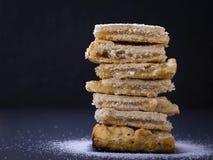 Hemlagad organisk äppelpajefterrätt som är klar att äta Fotografering för Bildbyråer