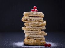 Hemlagad organisk äppelpajefterrätt som är klar att äta Arkivfoto