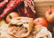 Hemlagad organisk äppelpajefterrätt som är klar att äta royaltyfri foto