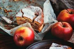 Hemlagad organisk äppelpajefterrätt som är klar att äta Skiva av den läckra nya bakade munnen som bevattnar den lantliga äppelpaj royaltyfri fotografi