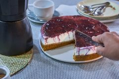 Hemlagad ostkaka med tranbärdriftstopp, tjänade som med ett kaffe arkivfoton