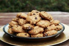 Hemlagad pumpachoklad Chip Cookies tjänade som på en platta arkivfoton