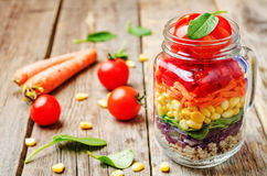Hemlagad regnbågesallad med grönsaker och quinoaen royaltyfria foton