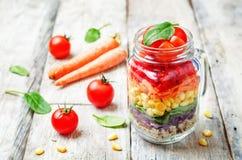 Hemlagad regnbågesallad med grönsaker och quinoaen arkivbild