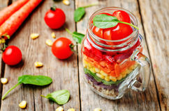 Hemlagad regnbågesallad med grönsaker och quinoaen royaltyfria bilder