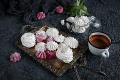 Hemlagad sefir för vanilj och för hallon, läckra rosa och vita marshmallower Royaltyfria Bilder