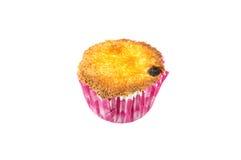 Hemlagad sockerkaka med russinet Royaltyfri Bild