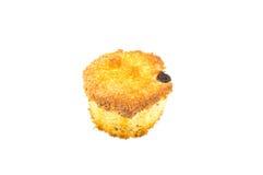 Hemlagad sockerkaka med russinet Arkivfoto