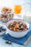 Hemlagad sund granola med blåbäret för frukost Royaltyfria Bilder