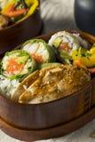 Hemlagad sushi Bento Box med ris Royaltyfria Bilder