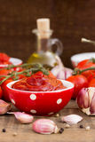 Hemlagad tomatsås royaltyfri bild