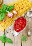 Hemlagad tomatsås för pasta och kött från nya tomater med vitlök, basilika och kryddor Royaltyfria Bilder