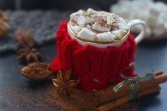 Hemlagad varm choklad för jul med marshmallowen, kanel och kryddor på mörk bakgrund, selektiv fokus Arkivbild