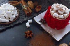 Hemlagad varm choklad för jul med marshmallowen, kanel och kryddor på mörk bakgrund, selektiv fokus Royaltyfria Bilder
