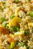Hemlagad vegetarian Fried Rice Royaltyfri Fotografi