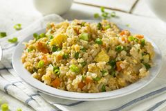 Hemlagad vegetarian Fried Rice Royaltyfri Foto