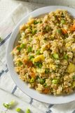 Hemlagad vegetarian Fried Rice Royaltyfria Bilder
