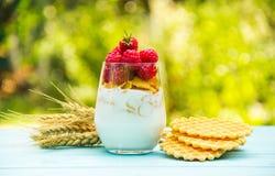 Hemlagad yoghurt med flingor och saftiga hallon Användbar frukost Royaltyfri Bild