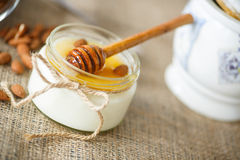 Hemlagad yoghurt med honung och muttrar Arkivfoto