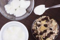 Hemlagad yoghurt med mysli Royaltyfri Fotografi