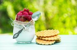 Hemlagad yoghurt och nya hallon i ett exponeringsglas med en sked Mysli, yoghurt och mogna hallon sund mat Royaltyfri Fotografi