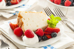 Hemlagade Angel Food Cake Royaltyfri Fotografi