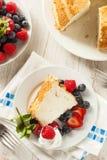 Hemlagade Angel Food Cake Arkivfoto