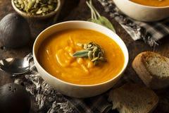 Hemlagade Autumn Butternut Squash Soup Arkivfoto