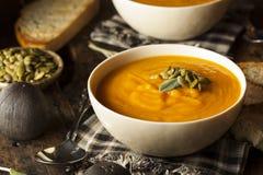 Hemlagade Autumn Butternut Squash Soup Arkivbilder