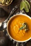 Hemlagade Autumn Butternut Squash Soup Fotografering för Bildbyråer