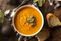 Hemlagade Autumn Butternut Squash Soup Royaltyfri Fotografi