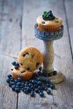 Hemlagade blåbärmuffin Royaltyfri Fotografi