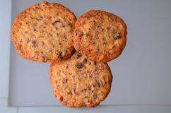 Hemlagade bruna kakor på en grå glass bakgrund Arkivfoton