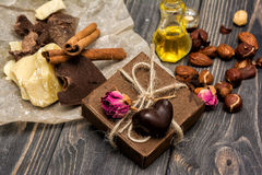 Hemlagade chokladcandys, kakao, kakaosmör Royaltyfri Fotografi