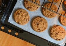 Hemlagade choklade kakor på den stekheta pannan Arkivbild