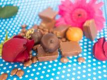 Hemlagade choklader på blå bakgrund Arkivbild