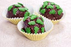 Hemlagade chokladpralines Royaltyfri Fotografi