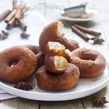 Hemlagade donuts med socker och kanel på en träbakgrund Lantlig stil royaltyfria bilder