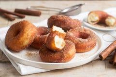Hemlagade donuts med socker och kanel på en träbakgrund Lantlig stil royaltyfri bild