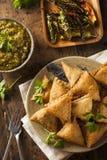 Hemlagade Fried Indian Samosas Royaltyfria Foton