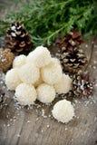 Hemlagade godisar med kokosnöten. Royaltyfri Foto
