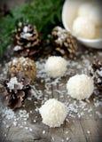 Hemlagade godisar med kokosnöten. Royaltyfri Bild