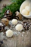 Hemlagade godisar med kokosnöten. Arkivbilder