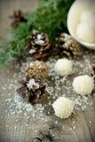 Hemlagade godisar med kokosnöten. Arkivbild