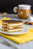 Hemlagade Honey Cake Slices Fotografering för Bildbyråer