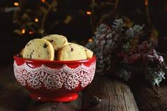 Hemlagade julkakor med torkat tranbär och havremjöl Fotografering för Bildbyråer