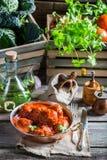 Hemlagade köttbullar med tomatsås Fotografering för Bildbyråer