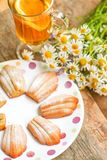 Hemlagade kakor av Madeleine med vanilj Arkivfoto